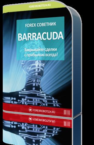 barracuda124